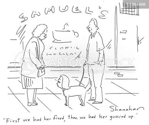 styled cartoon