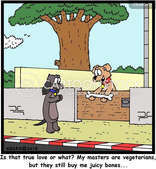 vegetarian lifestyle cartoon