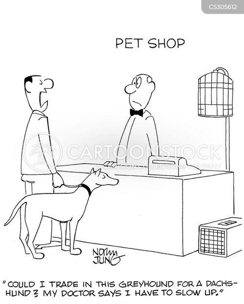 greyhound cartoon