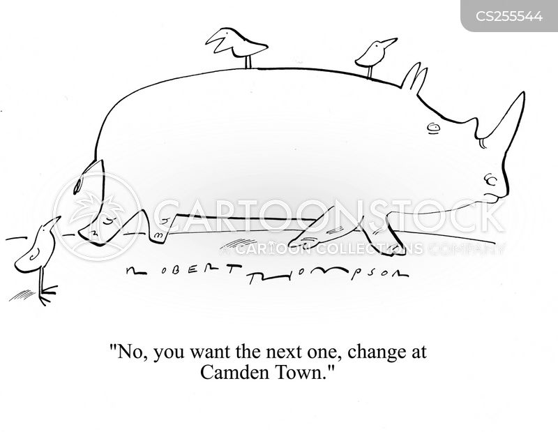 camden cartoon