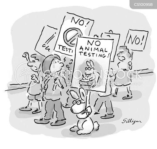 animal rights protestors cartoon