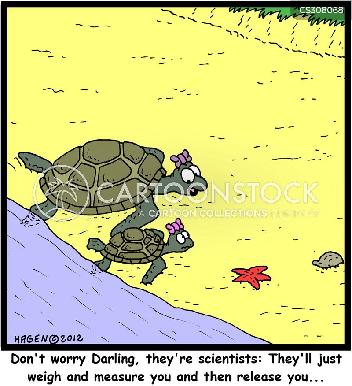 off spring cartoon