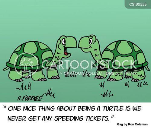 traffic violation cartoon