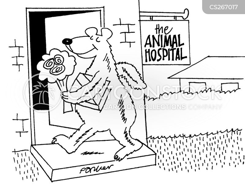 veterinary treatment cartoon