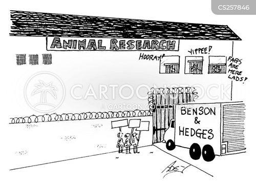 animal researchers cartoon