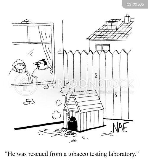 tabacco cartoon