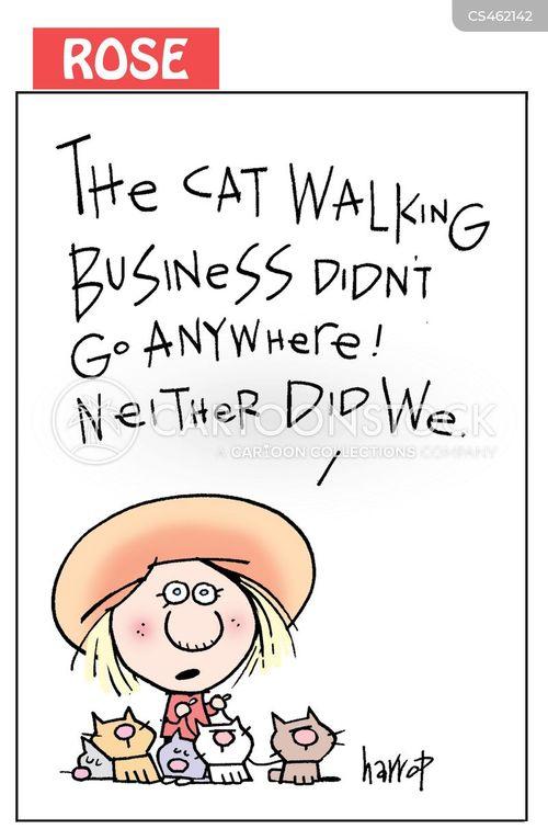 herding cats cartoon