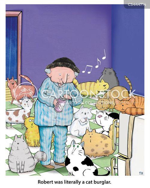 cat burglar cartoon
