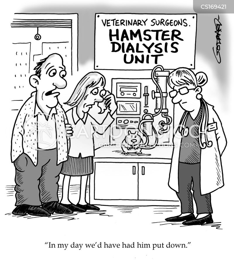 hamster cartoon