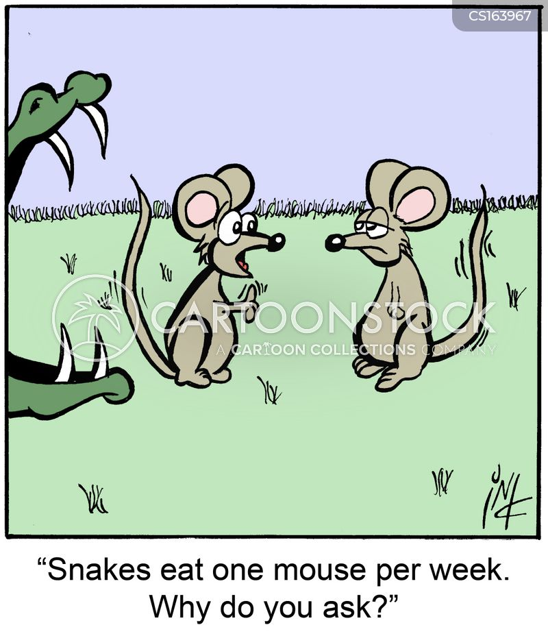 foodchain cartoons and comics funny pictures from
