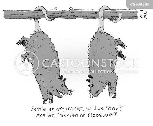 opossums cartoon