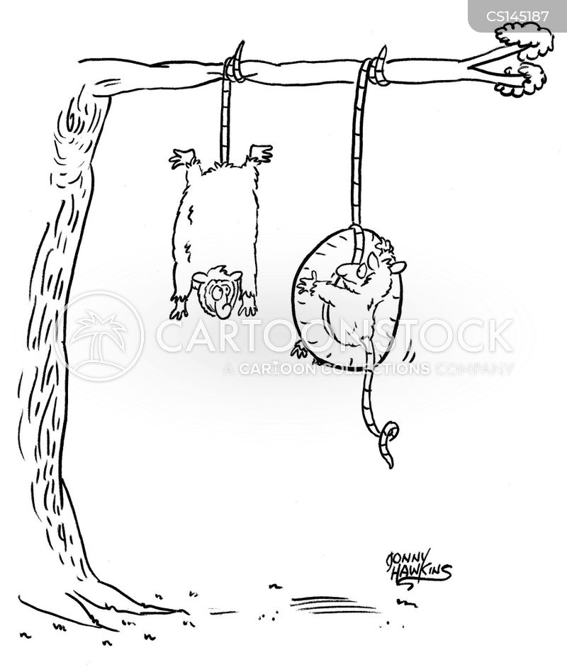 tire swings cartoon
