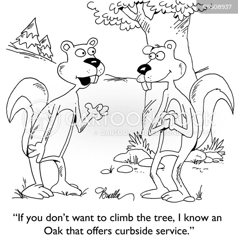 oak trees cartoon