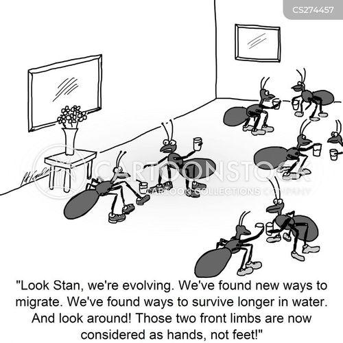 mingle cartoon