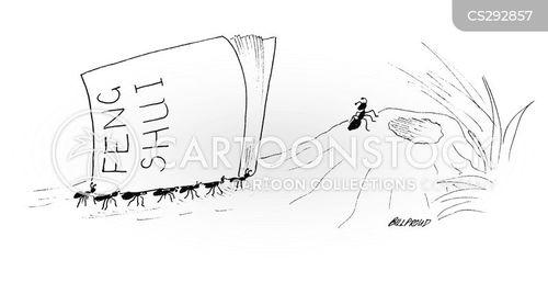 tao cartoon