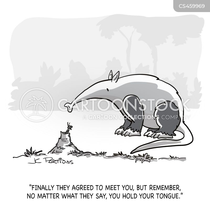 ant eater cartoon