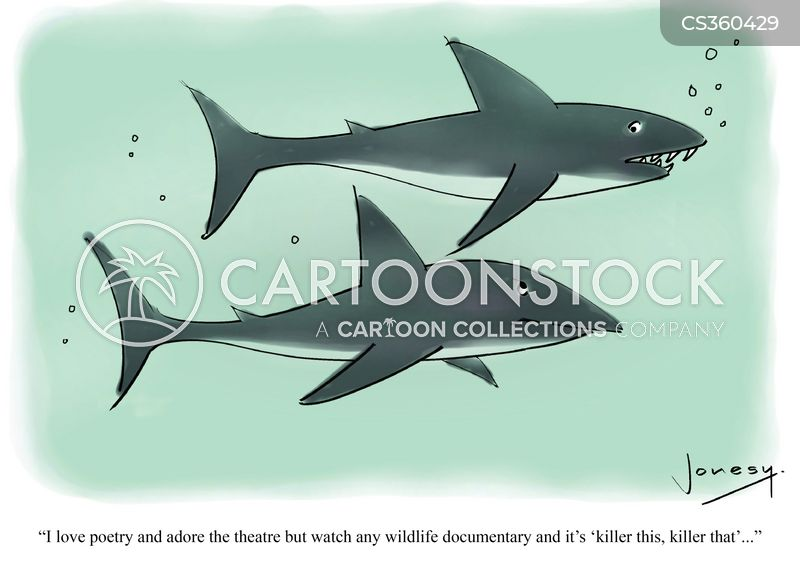 Apex Predator cartoons, Apex Predator cartoon, funny, Apex Predator picture, Apex Predator pictures, Apex Predator image, Apex Predator images, Apex Predator illustration, Apex Predator illustrations