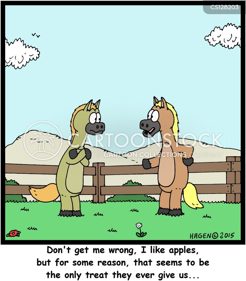 horse owners cartoon