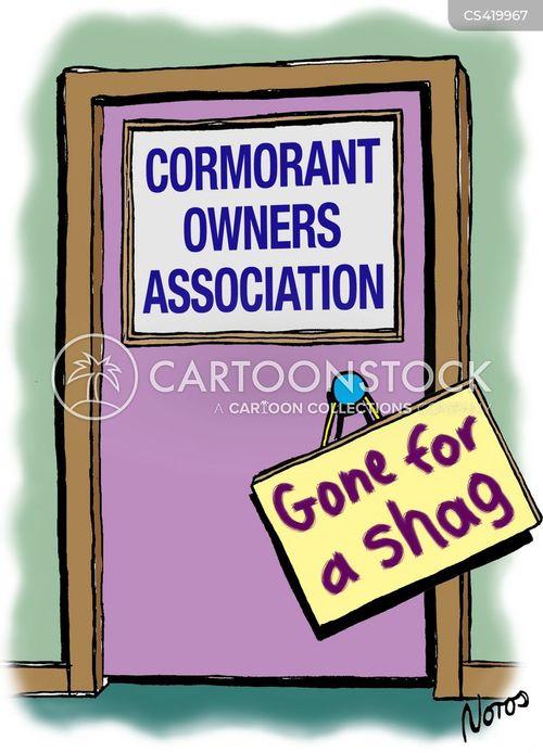 shags cartoon