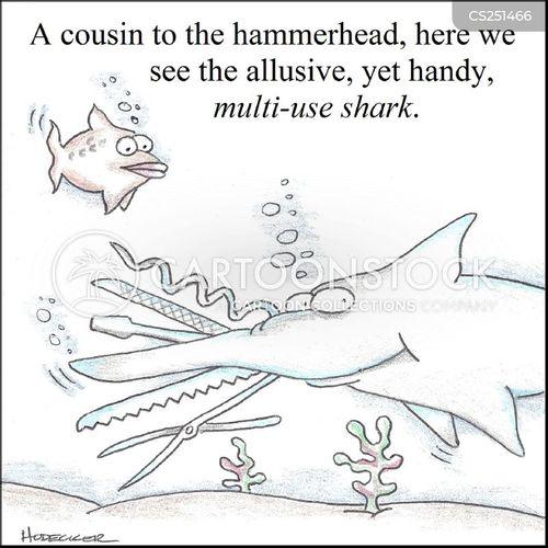 sharkers cartoon
