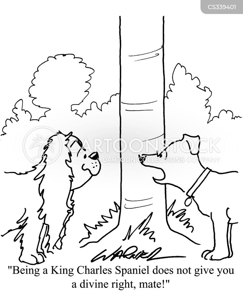 spaniel cartoon