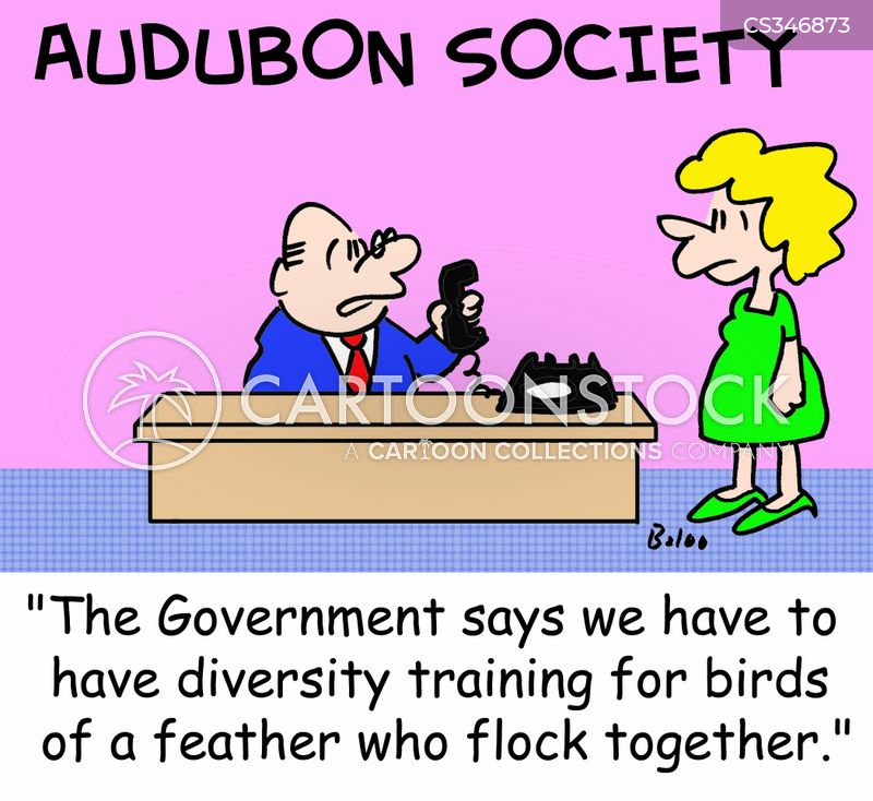 flock together cartoon