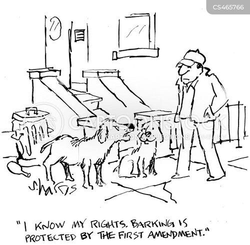1st amendment cartoon