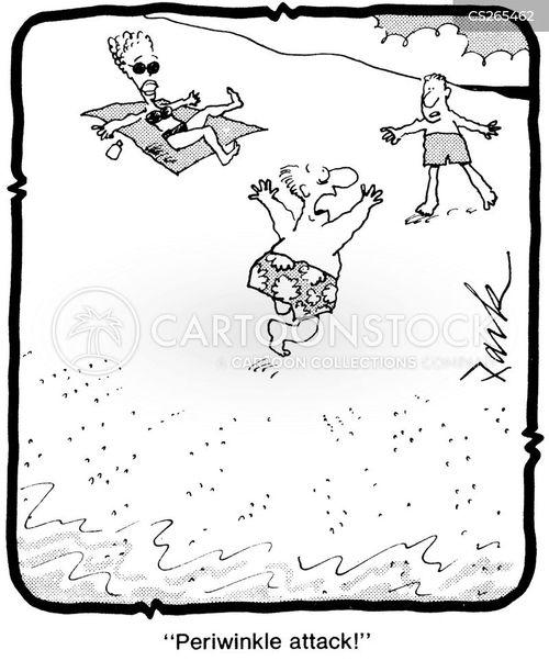 periwinkle cartoon
