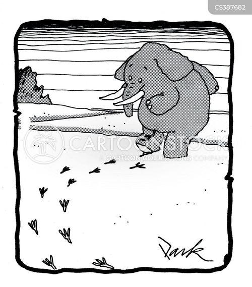 footstep cartoon