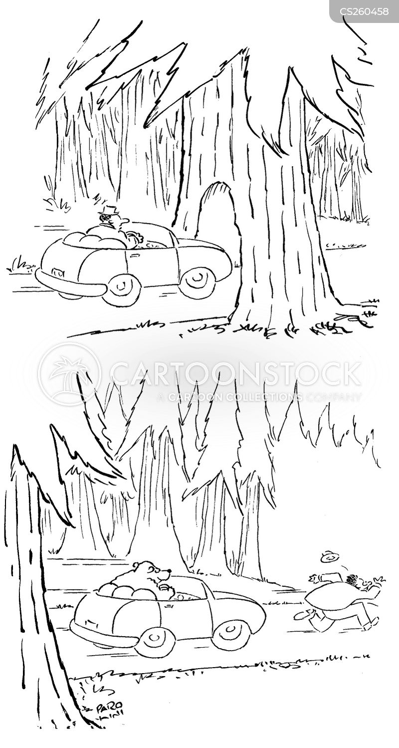 wooded cartoon