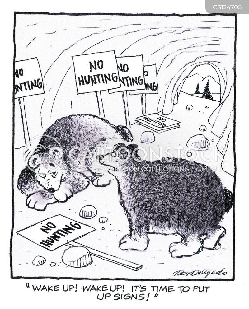 hibernate cartoon