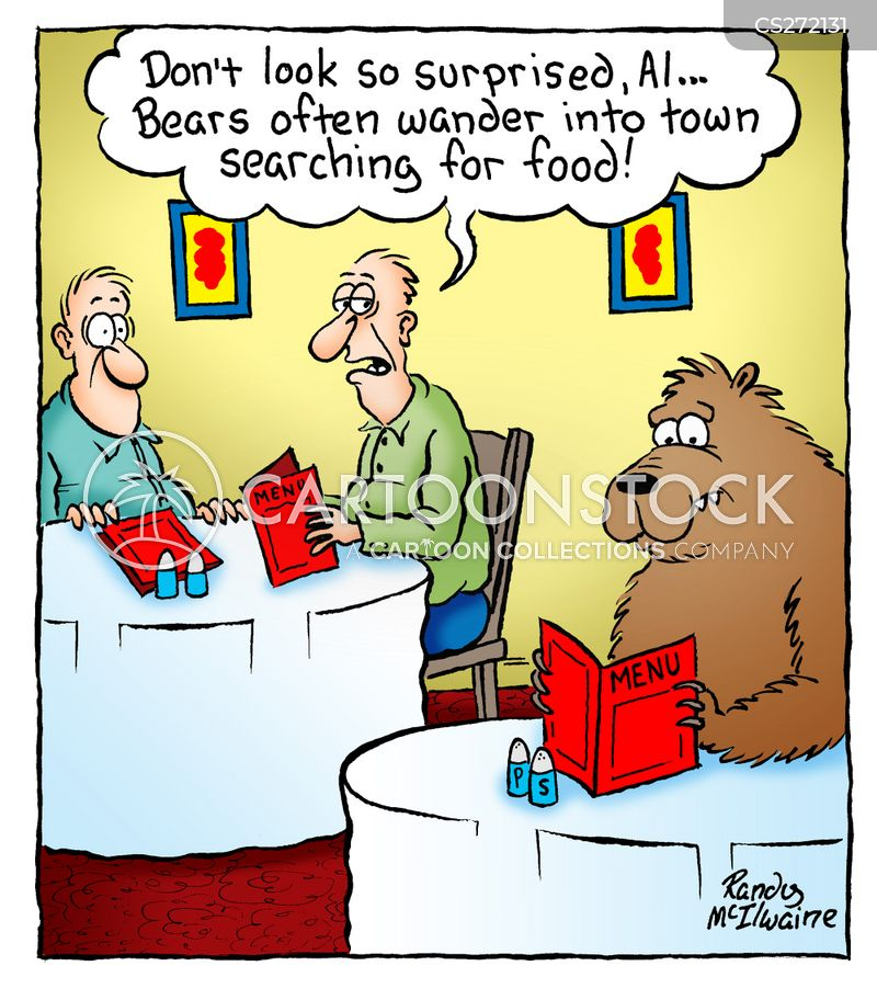 wild bear cartoon