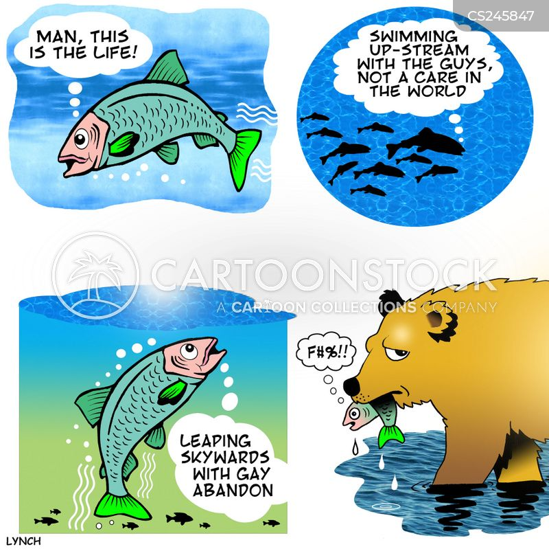 salmon spawn cartoon
