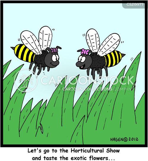 horticultural cartoon