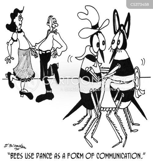 courtship ritual cartoon