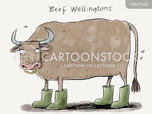 wellington boot cartoon