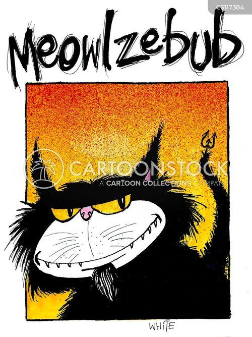 meow cartoon
