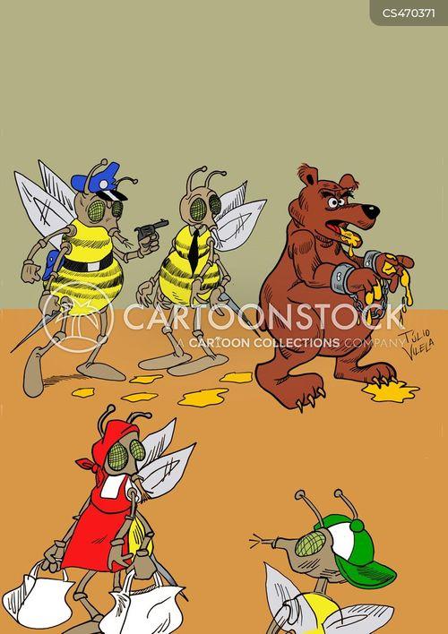 honey bears cartoon