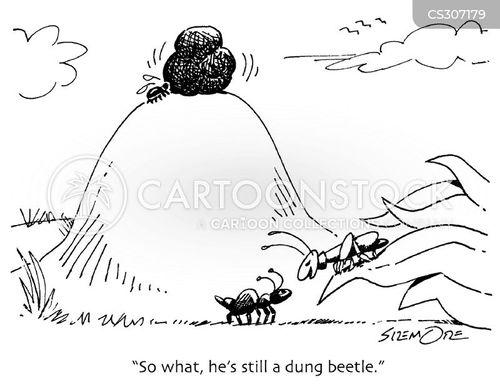 dung cartoon
