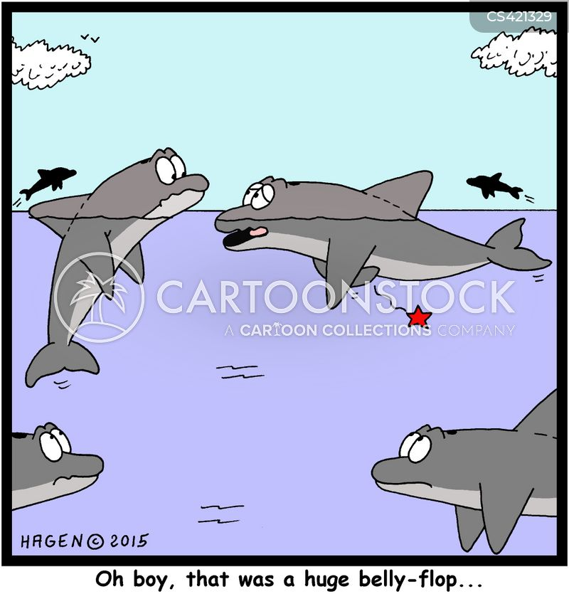dolphin pod cartoon