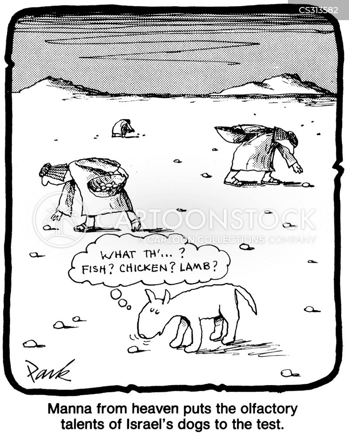 manna from heaven cartoon