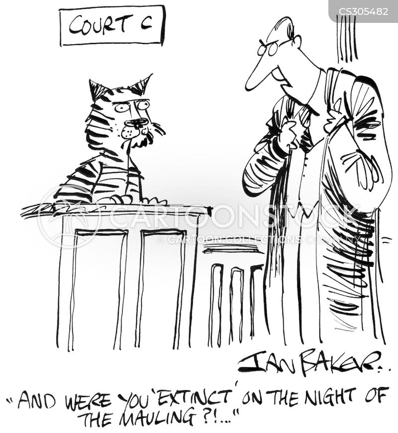 cross-examined cartoon