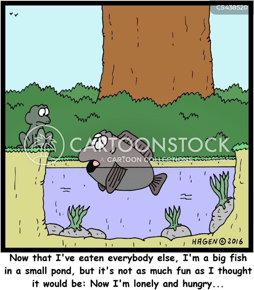 small pond cartoon