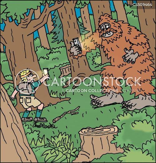 face-offs cartoon
