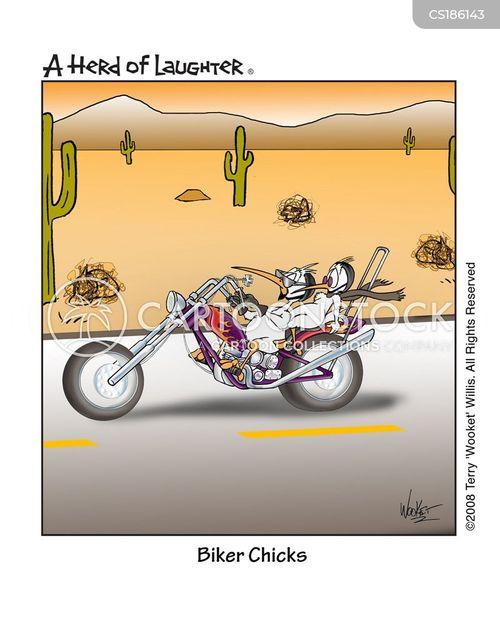 the open road cartoon
