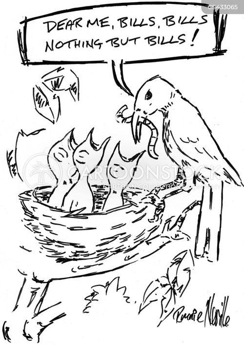 baby birds cartoon