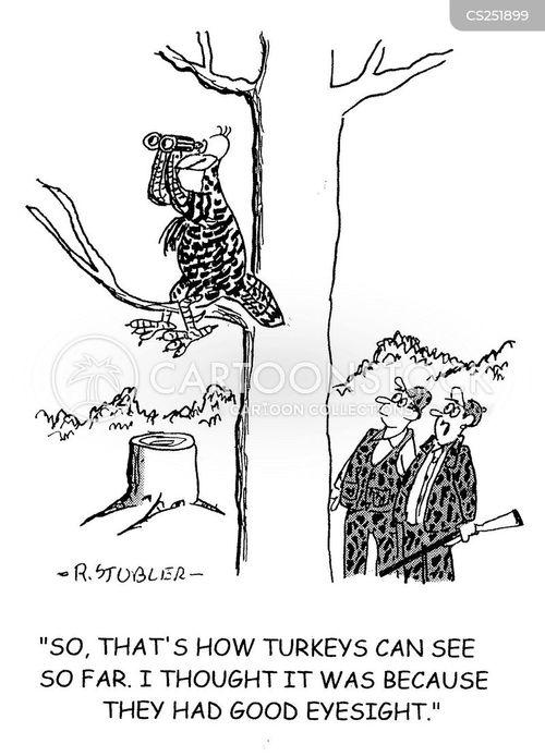 turkey hunting cartoon