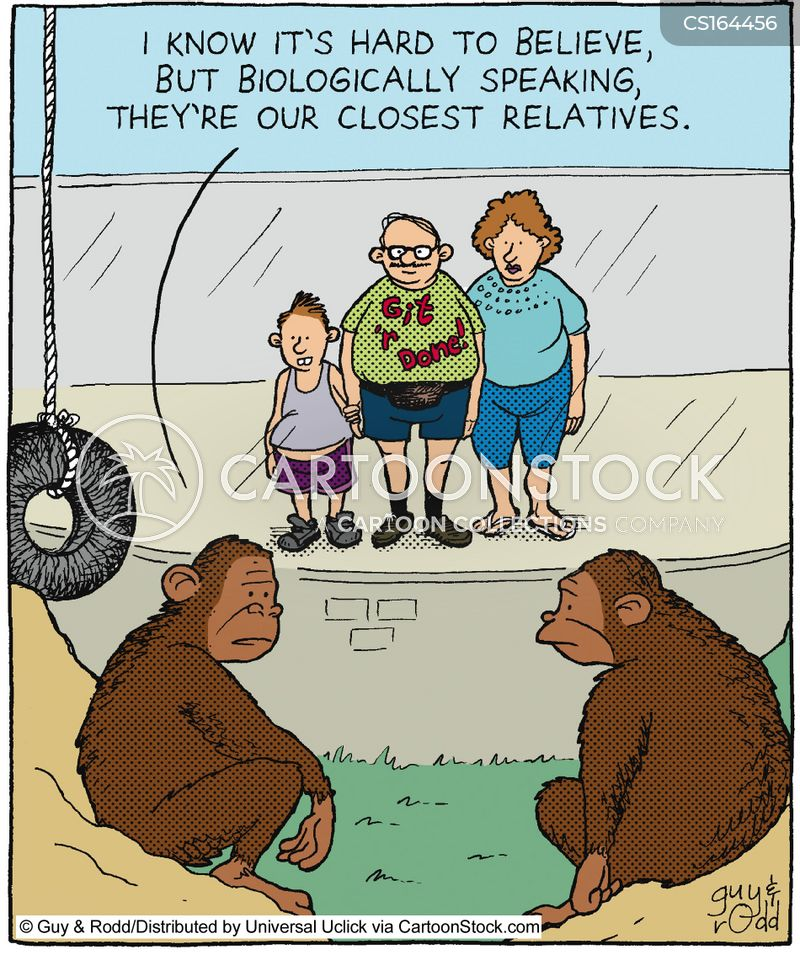 apes cartoon