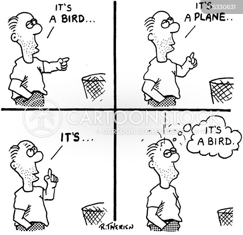 bird mess cartoon