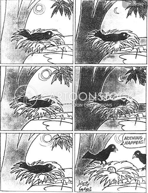 hatches cartoon